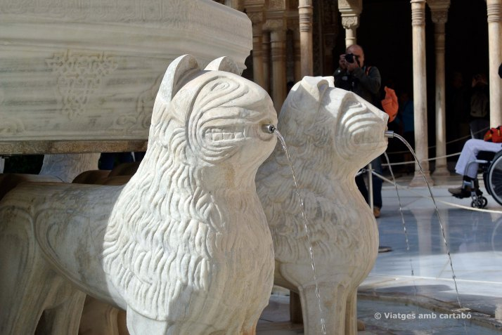 Les escultures dels lleons del Pati de los leones
