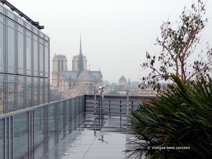 Terrassa i vistes de Notre Dame des de l'Institut del Món Àrab