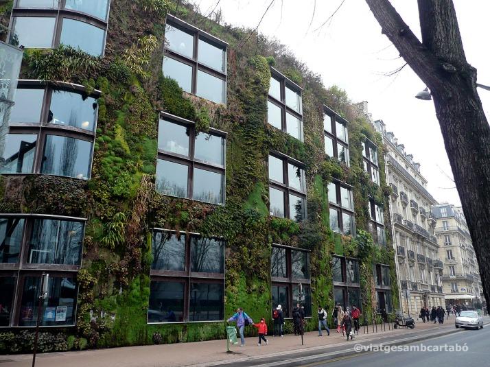 Musée du Quai Brainly contrast edificis