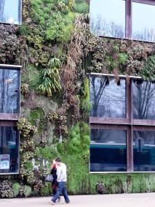 Musée du Quai Branly façana vegetal