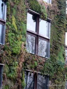 Musée du Quai Branly finestres