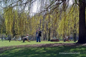 Londres Tumbones a Hyde Park