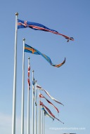 Banderes dels membres del Consell Nòrdic