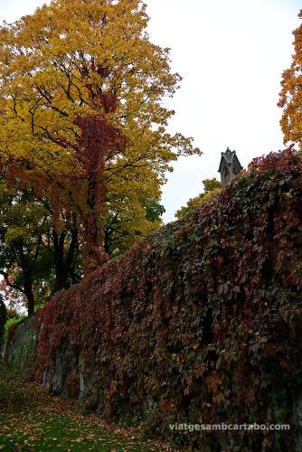 Tardor al Cementiri Var Freisers Gravlund a Oslo