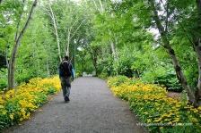 Akureyri passejant pel jardi botànic amb més de 150 anys