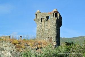 Nonza torre genovesa 2