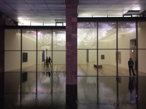 """Les llacunes contenen també una obra d'art """"Nenúfars"""""""